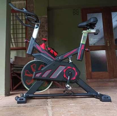S100 Spinning bike image 3