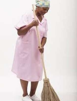 Housekeeping and Cleaning Services  image 3