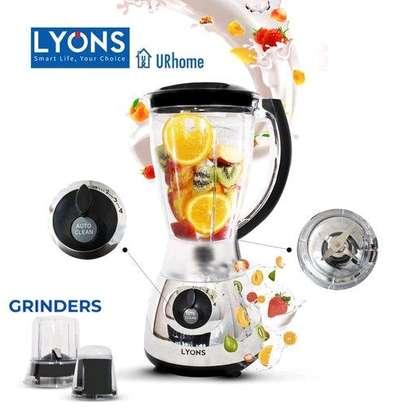 Lyons FY 306 3 IN 1 BLENDER WITH GRINDER image 1