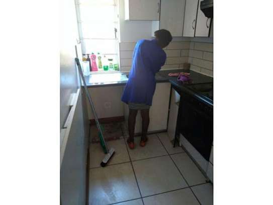 Hire Reliable & Affordable Gardening, Fundis, Cleaning, Pest Control,  Waste Removal,  Appliance Repair & Domestic Workers image 7