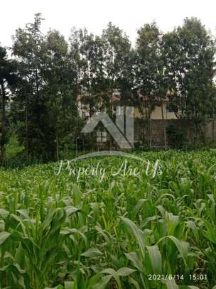 0.1 ha commercial land for sale in Kinoo image 6