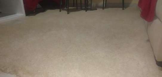 Shaggy carpet 7 by 10( 2 M by 3 M image 2