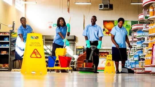Housekeepers   Housekeeper Nannies   Couples   Cleaning & Domestic Services.We're available 24/7. Give us a call image 11
