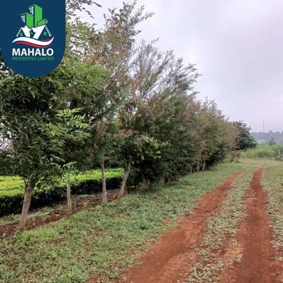 0.5 ac land for sale in Limuru Area image 10