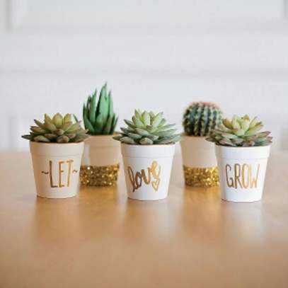 Let Love Grow! image 1