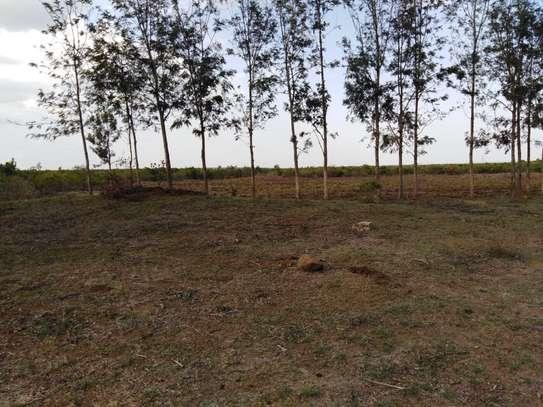 Approx 7 acres in Sipili, ndurumo, Laikipia county image 4