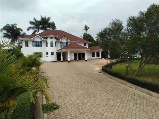 Nyari - House image 3