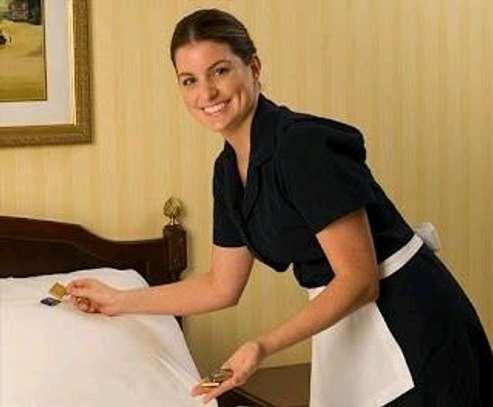 Professional housekeeper image 1