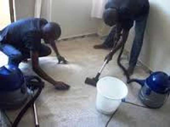 Cleaning Services & Domestic Services .Vetted and Honest Cleaners image 1