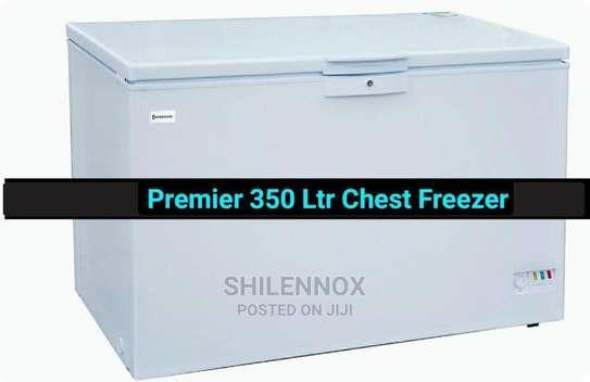 350 Lts Chest Freezer image 1