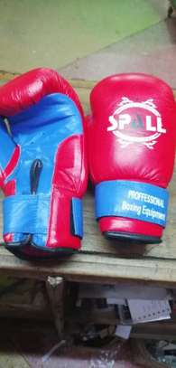 boxing gloves & Boxing equipment