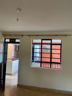 1 bedroom apartment for rent in Kitisuru image 14
