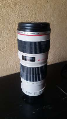 Canon 70-200mm F/4 USM Telephoto Zoom Lens