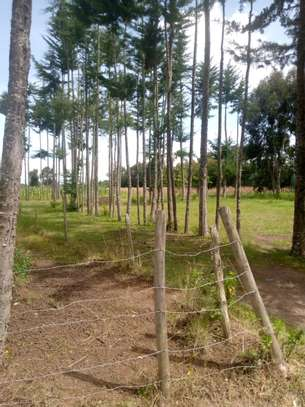 Land for Lease in Kinangop image 4