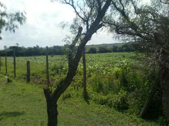 1acre land for sale in Naivasha image 2