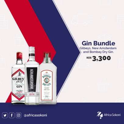 Gin Bundle