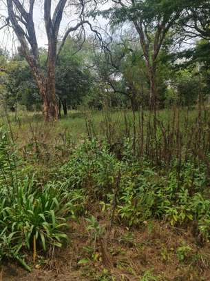 4 ac land for sale in Kilimani image 8
