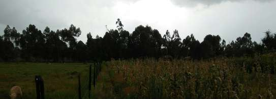 1.5 ACRES Agric/Residential Land Njabini