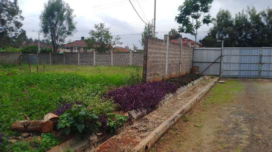 0.5 ac residential land for sale in Thome image 5