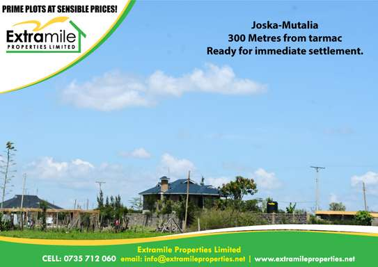 50 * 100  Prime Plot at Mutalia Joska