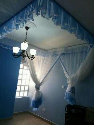 Rail Shears Mosquito Nets image 3