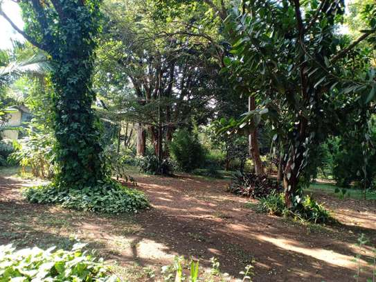 3 bedroom house for rent in Thigiri image 10