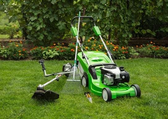 Reliable & Affordable Gardeners |High Quality Gardening & Landscaping.Contact us today image 7