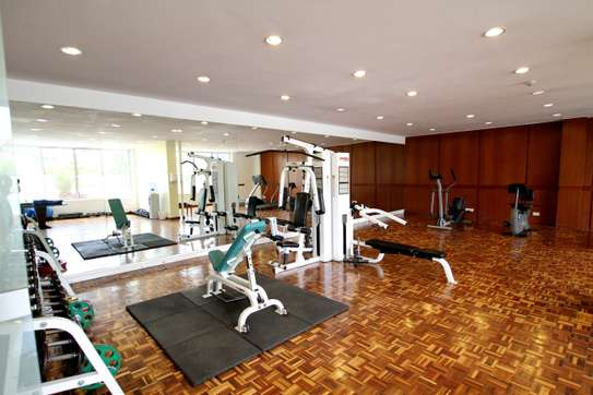 Furnished 4 bedroom apartment for rent in Kilimani image 13