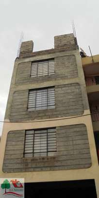 1 bedroom apartment for rent in Ruaka image 2