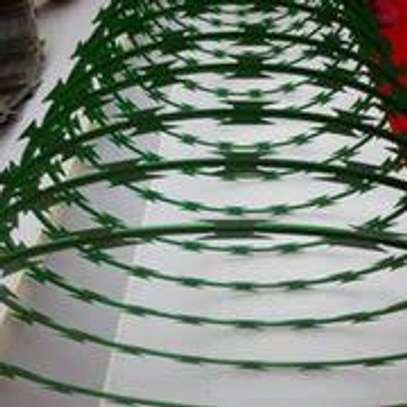 Green Concertina Razor Wire image 2