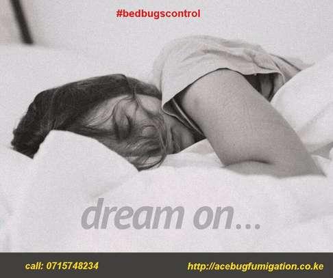 Acebug Fumigation Company image 2