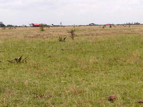 Juja farm  prime plots for sale image 2