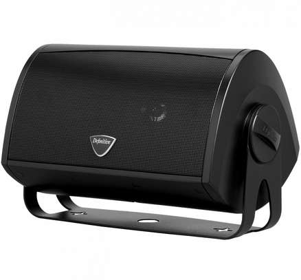 Definitive Technology AW5500 Outdoor All-Weather Loudspeaker image 2