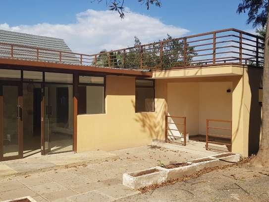 Lavington - Commercial Property, House, Bungalow image 19