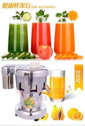 Heavy Duty Commercial Juice Extractor Stainless Steel Juicer Mixers image 1