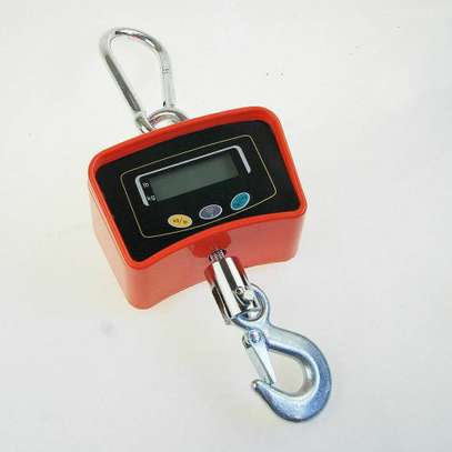 500KG 0.5 Ton Industrial Digital Hang Crane Scale image 4