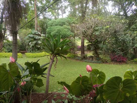 4 bedroom house for rent in Lavington image 2