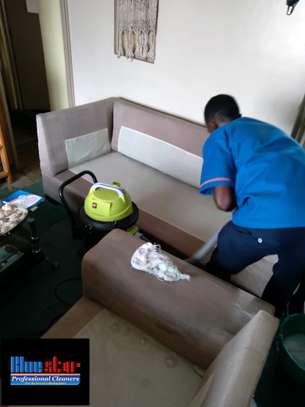 Bluestar Professional Cleaners Ltd image 2