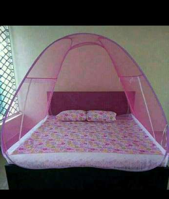 Tent's Mosquito Nets image 1