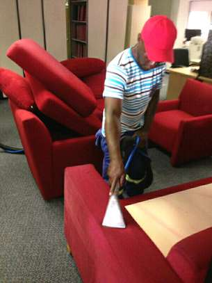 Professional Carpet Cleaning / Stain removal / House Cleaning image 3