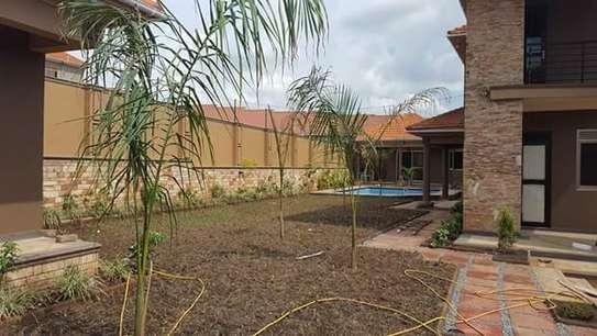Landscaping, gardening and maintaining. image 6