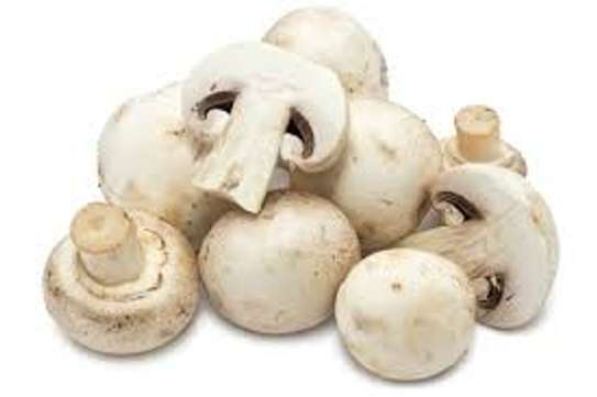 White Button Mushrooms: We buy them on Daily Basis  Market Price image 5
