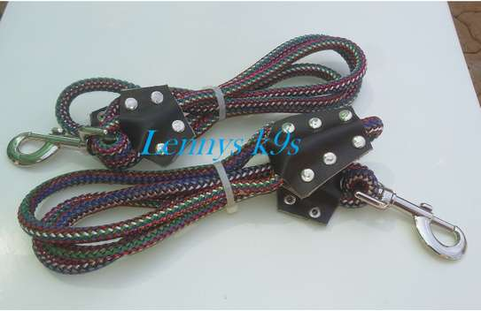 Dog leashes and collars. image 3