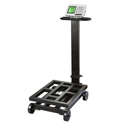 High Precision 500G Industrial Weighing Portable Scale image 2