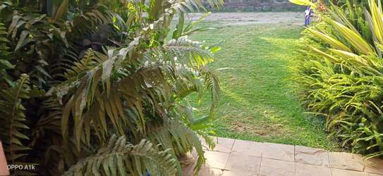 Accommodation available in ruiru BED AND BREAKFAST in kamakis area image 2