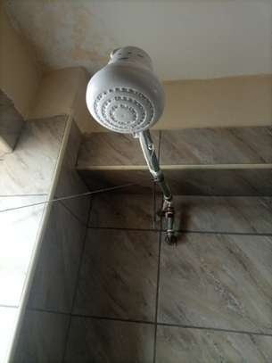 shower heads for salty /fresh /borehole water image 1