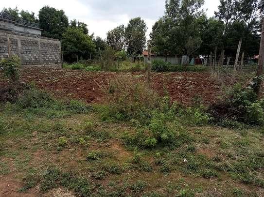 Land for sale in Kikuyu image 4