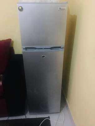 Double door Ramton Fridge