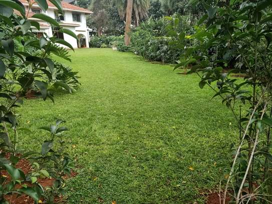3 bedroom townhouse for rent in Old Muthaiga image 4