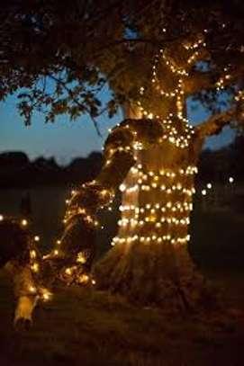 LED String Lights 10 meters image 1
